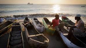 Autoridades moçambicanas apreendem mais de uma tonelada de caranguejo