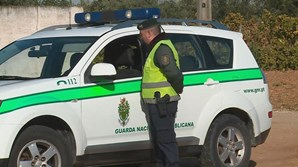 Autoridades investigam cenário de crime no Redondo