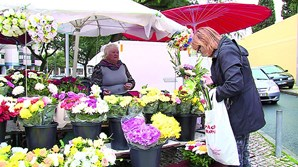 Floristas em Lisboa queixam-se das vendas
