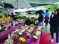 Venda de flores em Braga