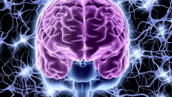 Cientistas identificam circuitos cerebrais envolvidos na perturbação psíquica 'mania' após uma lesão