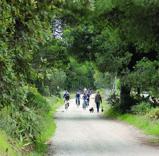Ecovia vai ligar duas cidades e visa estimular uso de bicicleta no dia a dia