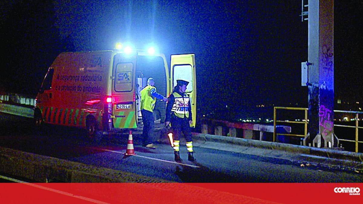 Condutora que atropelou homem e cão em Oeiras não fugiu do local - Correio da Manhã
