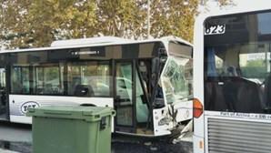 Dez feridos em colisão entre dois autocarros no Seixal. Grávida e criança entre as vítimas