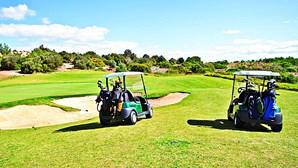 Construção de campo de golfe leva ao abate de 264 sobreiros