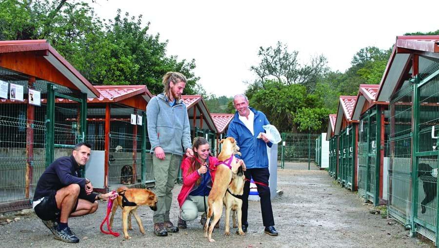 Sid Richardson reside no Algarve há mais de 20 anos e já investiu no canil mais de um milhão de euros