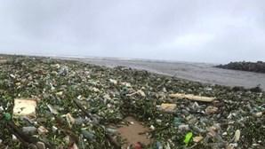 Imagens chocantes mostram mar de lixo em praia na África do Sul