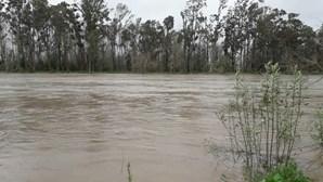 Vídeo mostra rio Mondego a pouco de galgar as margens