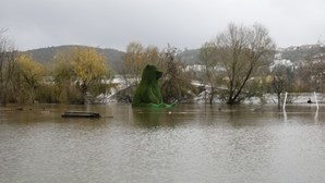 Localidade de Cabouco às portas de Coimbra evacuada por precaução devido ao mau tempo