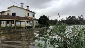 Depressão Fabien deixa rasto de destruição em várias aldeias de Coimbra. Veja as imagens