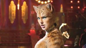 Gatos mutantes perdem carisma no grande ecrã