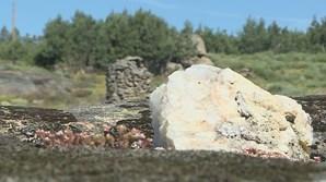 Explorações de lítio em Montalegre