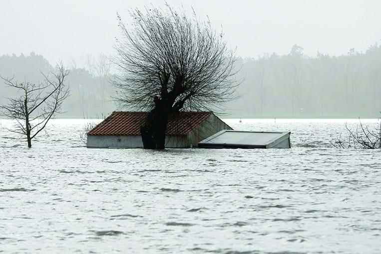 Estruturas agrícolas ficaram submersas em vários locais