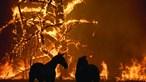 Inferno das chamas devora Austrália