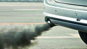 Investigadores querem contribuir para neutralidade carbónica das cidades a Norte