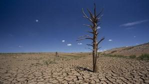 Humanidade começa a viver a crédito a partir de quinta-feira após ter consumido recursos planetários do ano