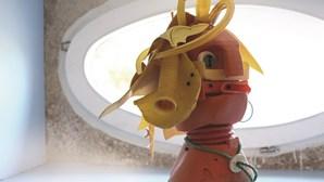 Exposição 'Bonecos Salgados' é um alerta para o ambiente