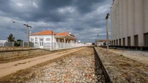 Comboios dão lugar a passeios turísticos de 220 quilómetros