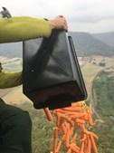 Helicópteros largam comida para alimentar animais nos fogos da Austrália