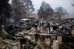 Casal reconstrói 'santuário' de animais selvagens após destruição causada pelos fogos na Austrália
