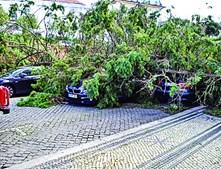 Carros danificados em Coimbra