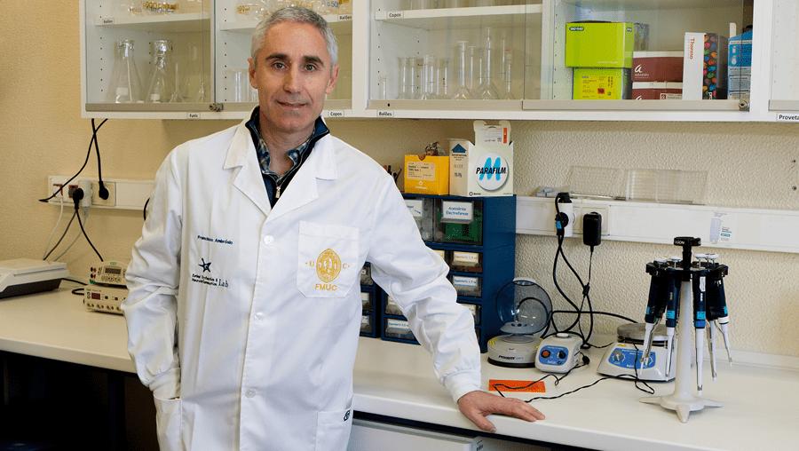 Francisco Ambrósio é investigador coordenador na Faculdade de Medicina da Universidade de Coimbra e diretor do Instituto de Investigação Clínica e Biomédica de Coimbra.