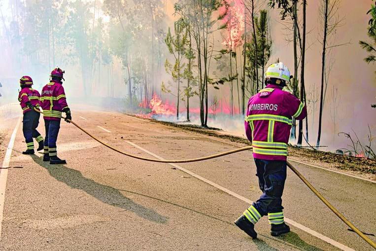 Incêndios rurais vão ser alvo de discussão num seminário, pela primeira vez, dedicado ao problema