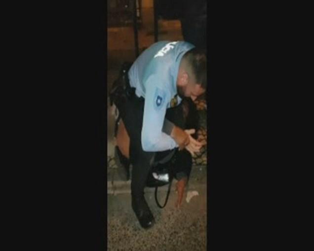 PSP alega que agente foi agredido e empurrado durante detenção de mulher na Amadora