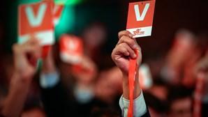Paulo Colaço derrota aposta de Rui Rio na presidência do Conselho de Jurisdição do PSD