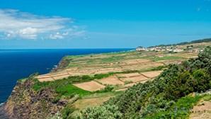 Crianças até 12 anos não vão pagar viagem de avião para os Açores