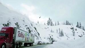 Esquiador realiza sonho e faz salto arriscado