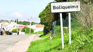 Dezenas de animais furtados em Boliqueime