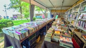 Mercado dos livros continua a crescer
