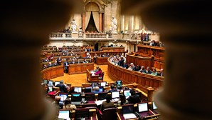 """Grupo interrompe trabalhos na Assembleia da República e pede """"liberdade"""" para Rui Pinto"""