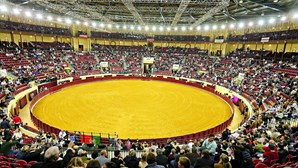 Câmara de Lisboa aprova moção do CDS pela reabertura da atividade tauromáquica