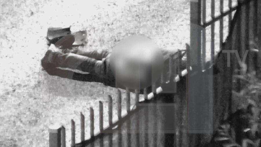 Imagens exclusivas de uma noite de terror que terminou na morte de Ficini