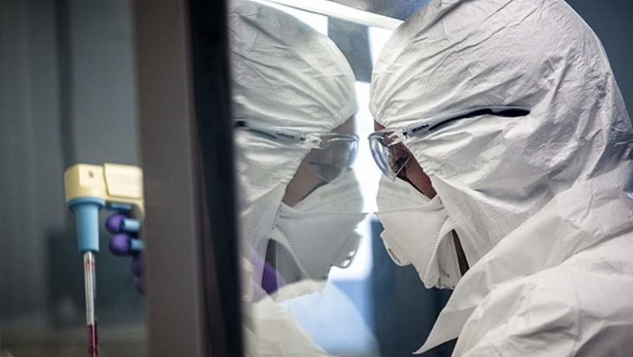 Cientistas investigam o coronavírus