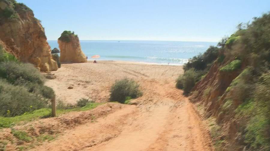 Quase duas toneladas de haxixe e 11 detidos durante operação em praia de Portimão