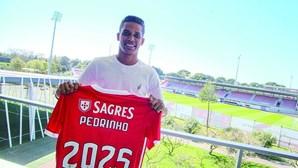 Primeiro reforços para Jorge Jesus no Benfica chegam esta sexta-feira