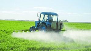 Agricultores temem período de sementeira com impacto do coronavírus