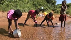 Moçambique entre os 27 países que enfrentam maior crise alimentar das últimas gerações