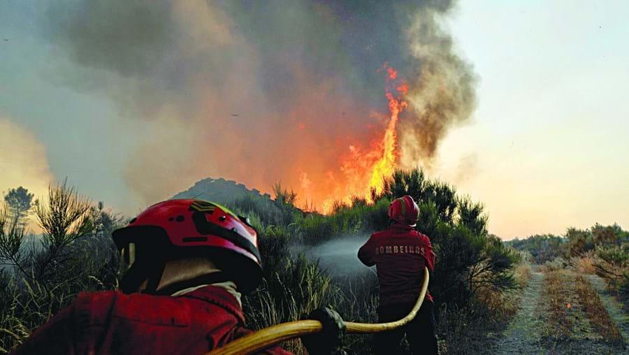 Provocou seis incêndios florestais para dar nas vistas no terreno como Comandante Operacional de Socorro