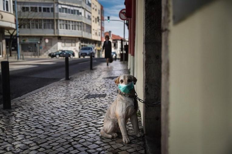 Cão de porcelana com uma máscara de proteção na Amadora