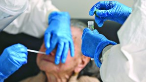 Vítimas mortais por coronavírus em Portugal perto de 20 por dia