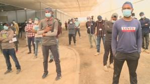 Governo aplica medidas apertadas para emigrantes que trabalham na agricultura