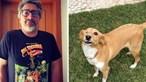 'Foi uma lição viva de esperança': Nuno Markl emociona seguidores ao despedir-se da sua cadela