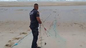 Polícia Marítima apreende seis redes de pesca em praias de Espinho e Esmoriz