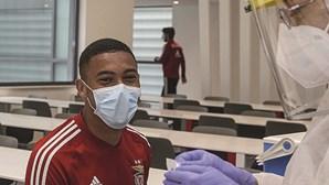 Jogadores do Benfica, equipa técnica e staff submetidos a novos testes ao coronavírus