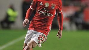 Arsenal quer levar Rafa do Benfica