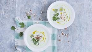 Receita rápida, fácil e bem fresca: sopa fria de pepino